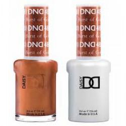 DND - D481 Burst of Gold